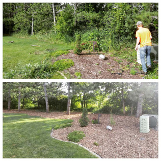 tree removal Owatonna and Faribault, MN