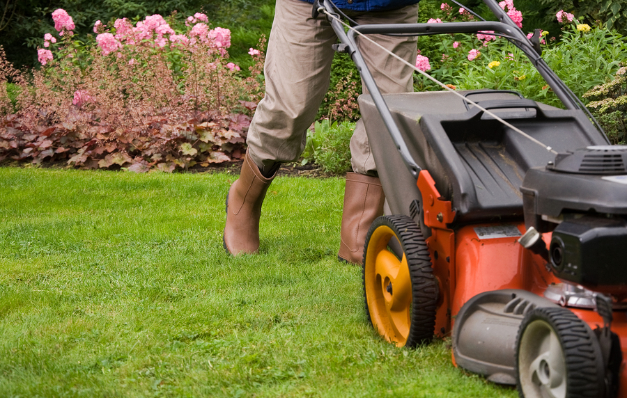 Keep Your Lawn in Pristine Condition Year-Round!
