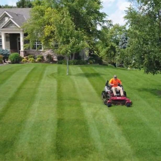 lawn care Owatonna and Faribault, MN