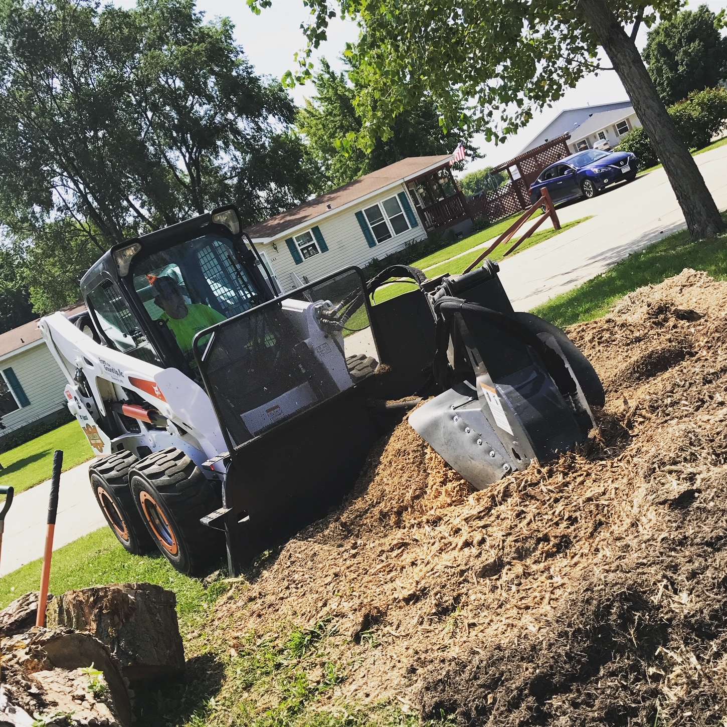 tree service Owatonna and Faribault, MN